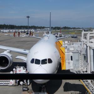 JALビジネスクラスの機内食(成田〜ヘルシンキ)の機内食(2019/9/28)