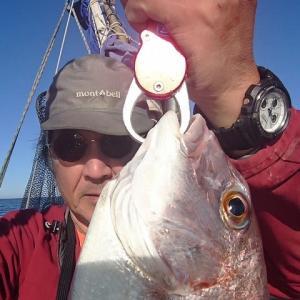 久しぶりの 鯛釣り