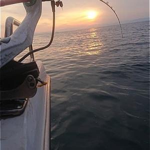 漁師の腰痛
