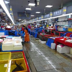 韓国激安ツアー体験取材(2) 甘川洞文化村
