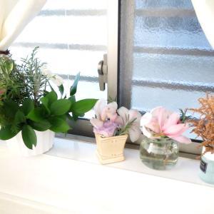 いつでもどこでもお花を楽しめます!
