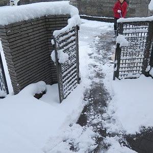 今冬最高の冷え込み、「積雪20cm」。