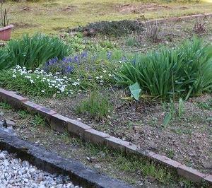 庭の花壇内「小花壇」頑張っています。
