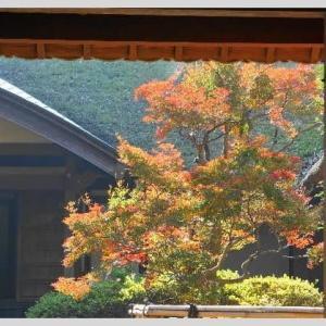 泉石邸の秋