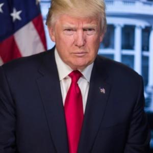 トランプ大統領に学ぶ批評家&誹謗中傷への対応