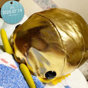 金色のダンゴムシ。