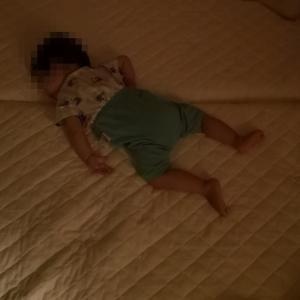【1歳児のパジャマ】サイズ感と最安値情報