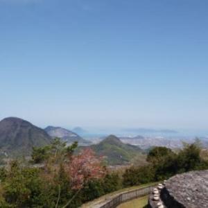 久しぶりのブログ更新はイノシシの水浴び場も横切った春の山歩き