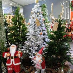 クリスマス装飾の写真