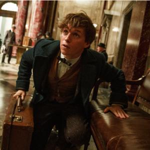 ファンタビ最新作 3作目 映画タイトル決定 FantasticBeasts The Secrets of Dumbledore(仮訳)ファンタスティックビーストとダンブルドア家の秘密 映画公開2022年4月15日