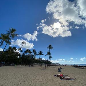 ハワイが目的ぢゃなくてフライングホヌに乗るのが目的なんだモン! トロリーバスにチャレンジ!!