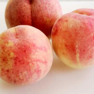 那珂川町産の桃と○○のムース