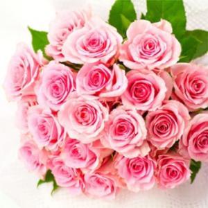 薔薇の香りが必要なとき