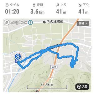紫陽花観音寺