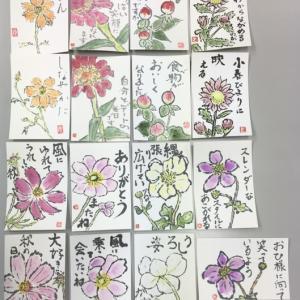 花水木絵手紙教室 どちらが好き ♪♪