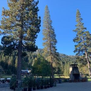 Lake Tahoe 2019②-Hard Rock Hotel&Casino