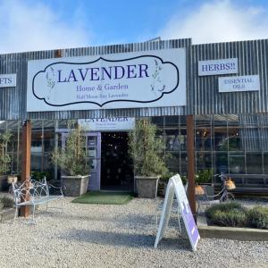 可愛いラベンダーのお店Half Moon Bay Lavender