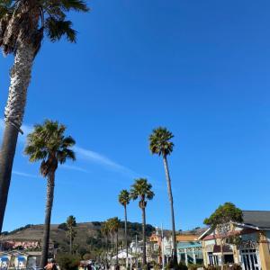 ホリデー旅行2020②Avila Beach