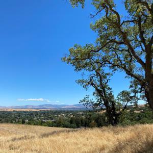 週末のハイキングBishop Ranch Regional Open Space