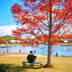 【ワンコとキャンプ】紅葉の福島 エンゼルフォレスト その3