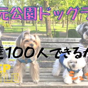【VLOG】水元公園ドッグラン