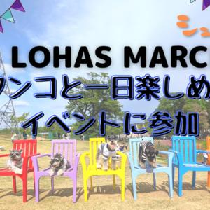【VLOG】58 LOHAS MARCHE