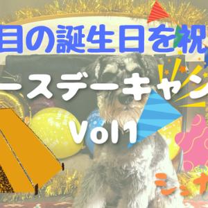 【VLOG】バースデーキャンプ VOL 1