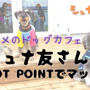 【VLOG】久々の小山入り FOOT POINTでシュナ友とマターリ