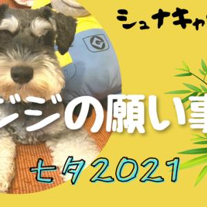 【VLOG】ジジの願い事 七夕2021