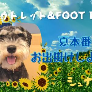 【VLOG】佐野アウトレット&FOOT POINT