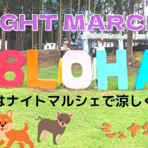 【VLOG】NIGHT MARCHE