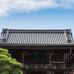 花の御寺 -長谷寺-