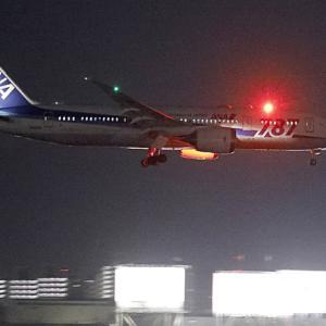 787(ロゴ入り機最終日)