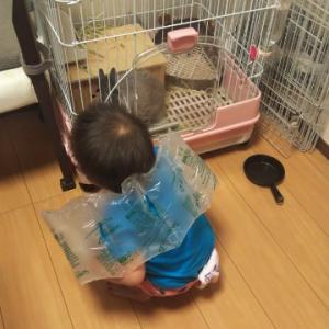 予測不能な2歳児(2歳1ヶ月)