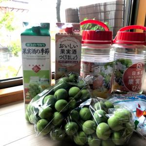 梅酒づくりデビュー!!