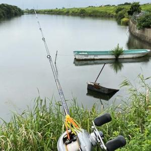 大江川のバス釣り ポイントと攻略方法 | ベイト or スピニング? おすすめのタックルとルアーを紹介