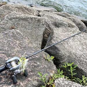 琵琶湖でランカーを獲るためのロッド選び