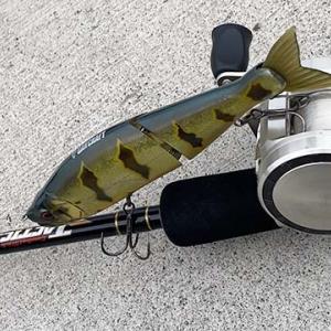 釣れない時のコツとヒント   おすすめビッグベイトの使い方