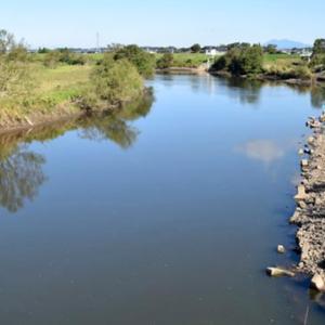 河川・リバーフィールドの「川バス釣り攻略法」   おすすめルアー、使い方