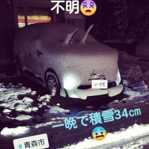 #青森市 #一晩 #積雪34cm #もはや #車種不明#雪国ならでは