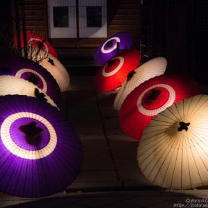 第十五回長野灯明まつり~祭りを彩る光たち