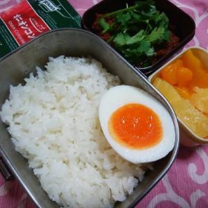 キーマカレー(パクチー)/お弁当