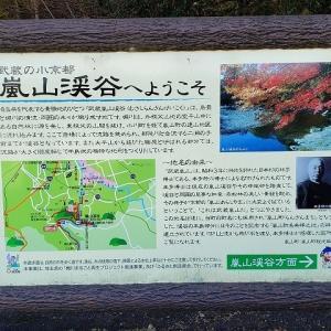 嵐山渓谷へ!