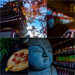 京都へ行った気分で寺巡り。
