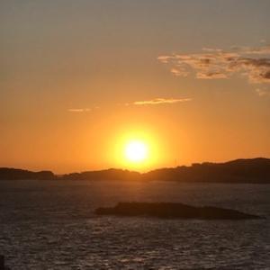 沖縄が日間賀島に!海に足を浸けて浜辺で一生懸命遊ぶ姿は、時空を超えて一つに繋がっている!