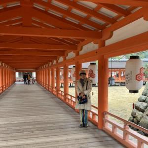 マキちゃんと初詣!宮島厳島神社はお得感満載ツアー!2020年もバッチリはじまりました!楽しい1日