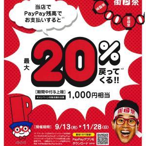 PayPayお支払いで20%戻ってくるキャンペーン