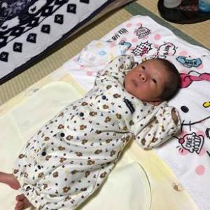 赤ちゃん用ミルク売れ筋について