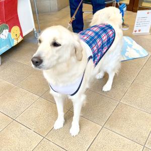 盲導犬育成サポートショップ