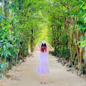 沖縄のジブリ『フクギ並木』散策